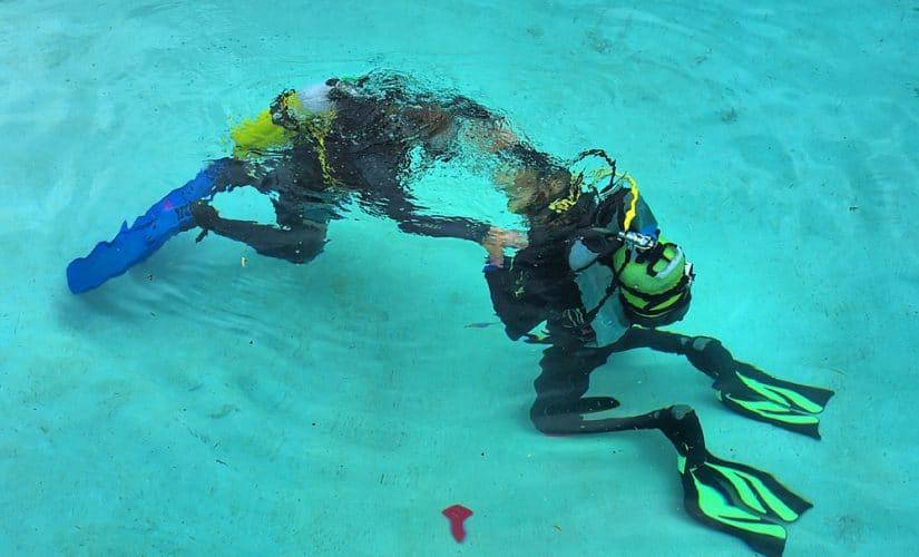 Initiation : Les 9 étapes d'apprentissage de la plongée sous-marine